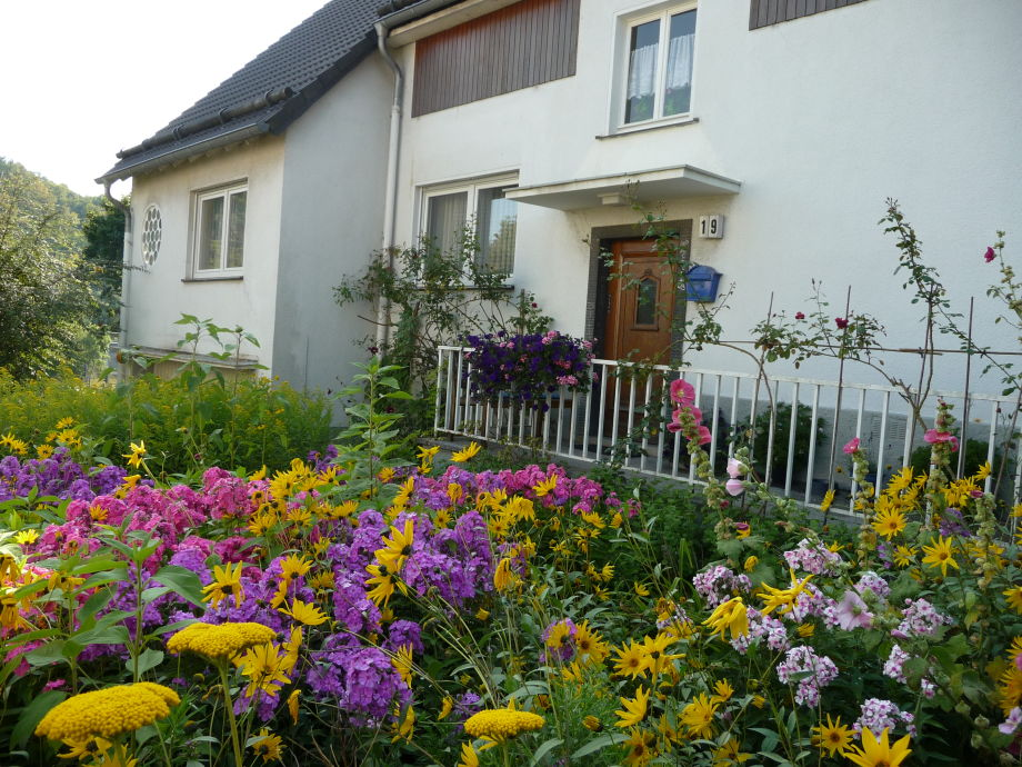 Wundervoller Garten mit bunten Blumen
