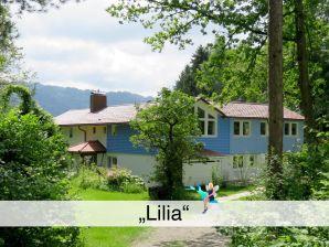 """Ferienwohnung """"Lilia"""""""