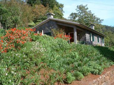 Cottage Casa Tilia