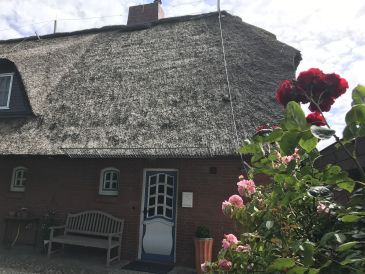 Ferienhaus Sommerfrische