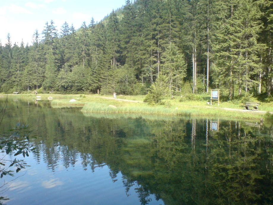 Small Lake Nearby (Blausee)