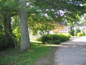 Ferienhaus Altes Komödienhaus