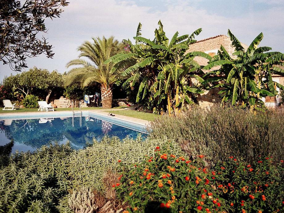 Blick vom Grundstück über pool zum Haus