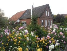 Bauernhof Ostrhauderfehn