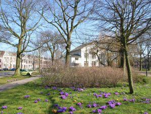 Ferienhaus Aan het Frederikspark