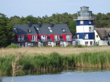 Ferienhaus Deichhaus No 1 direkt auf dem Deich