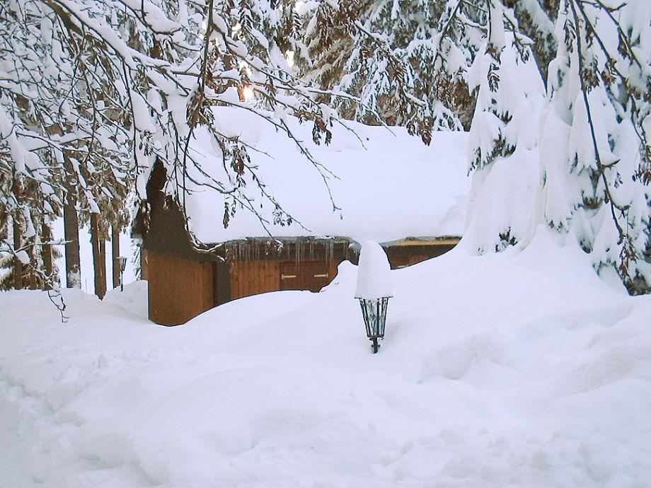 Grundstück im Winter