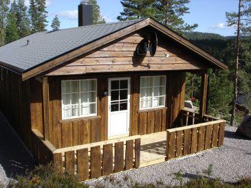 Ferienhaus Telemark Cottage