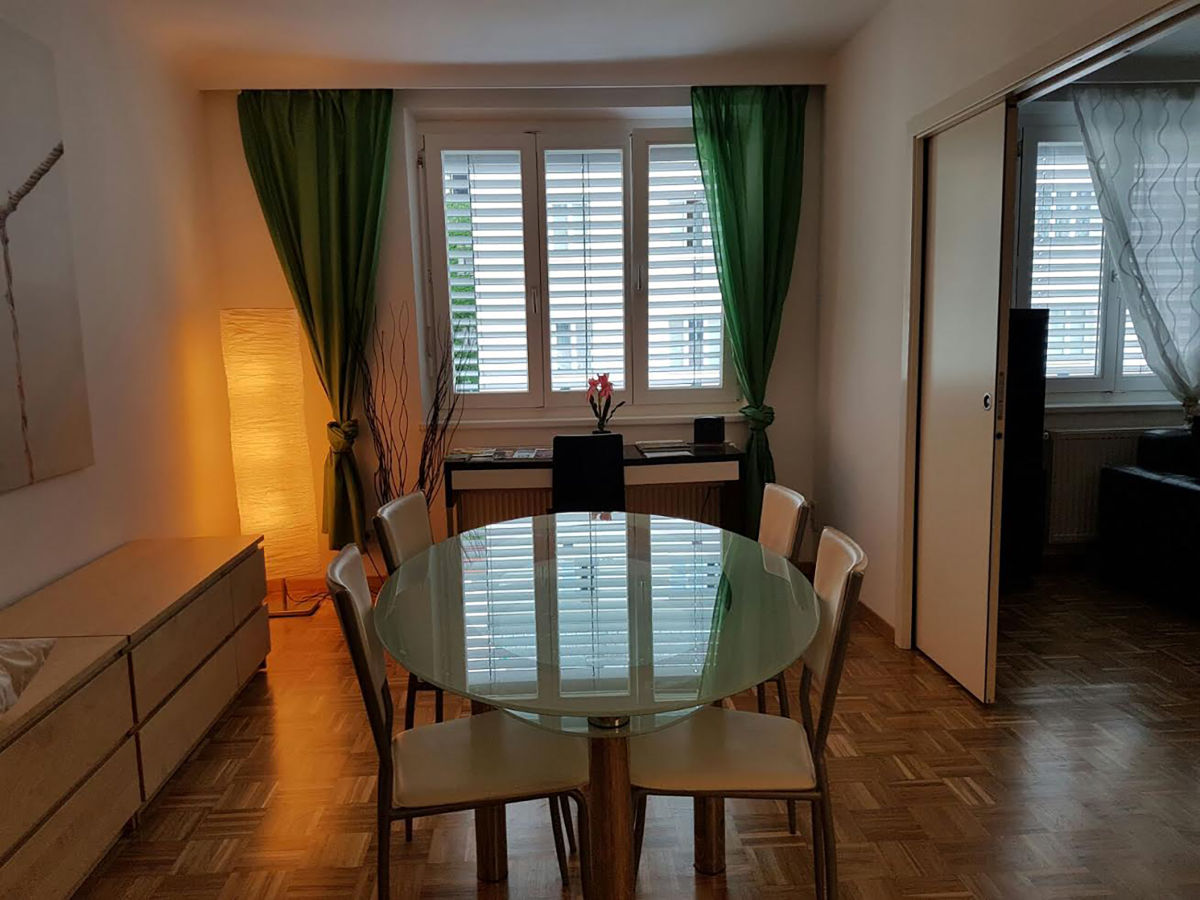 apartment zentrum g nstig wien firma danube apartments frau d rdane leierer. Black Bedroom Furniture Sets. Home Design Ideas
