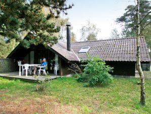 Ferienhaus Væggerløse, Haus-Nr: 14534