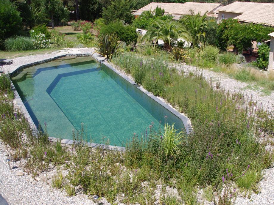 Natürliche Swimmingpool
