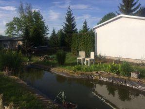 Ferienhaus Schönfelds Oase am See