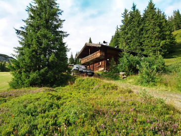 Berghütte Almliesl SAAB-562