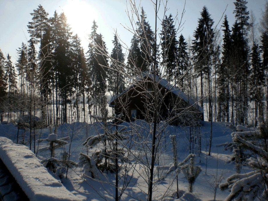 Kuschelige Auszeit im Winter geniessen. Langlauf-Ski...