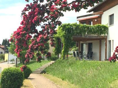 Alpenblick am Rosenwanderweg