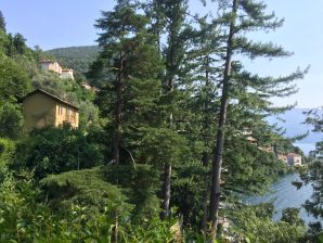 Apartment Villa Louisa mit Paradiesgarten