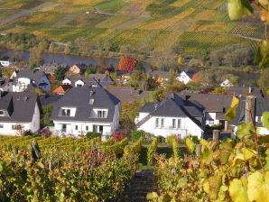 Ferienwohnung mit Terrasse an den Weinbergen