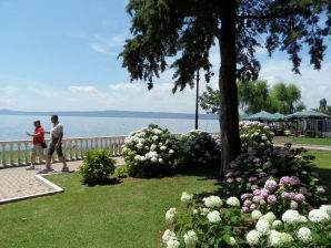 """Ferienwohnung """"Apartment Bolsena"""" Platanenallee zum See"""