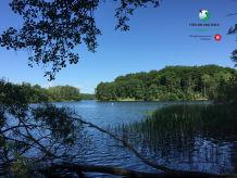 Ferienhaus Natur pur, nah am Schaalsee