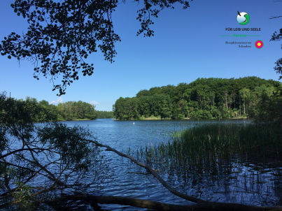 Natur pur, nah am Schaalsee