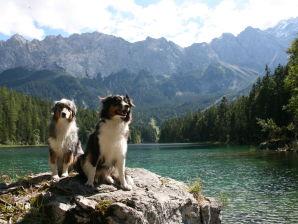 Ferienwohnung Alpen Deluxe