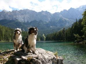 Ferienwohnung Alpensuite