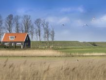 Landhaus in der Polderlandschaft