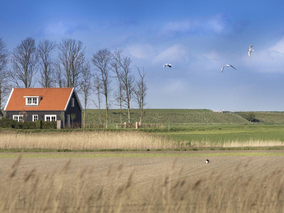 Bauernhaus im Polderlandschaft