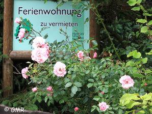 Ferienwohnung Reuter-Schneider