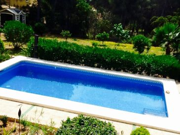 Ferienhaus Villa Goldenpalm