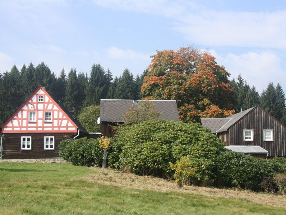Ferienhof Zollfrank im Sommer