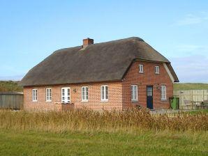 Ferienwohnung Bøvlingbjerg, Haus-Nr: 33507