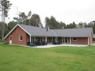 Ferienhaus Hejrehus (L210)