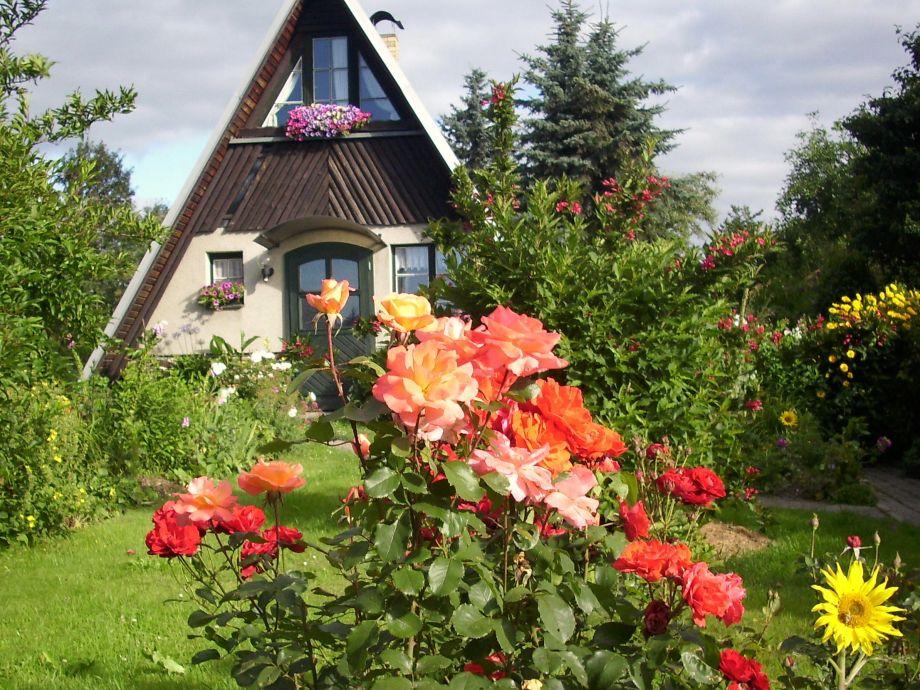 Blumenwunder vor der Hütte