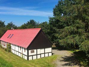 Ferienwohnung Aakirkeby, Haus-Nr: 44617