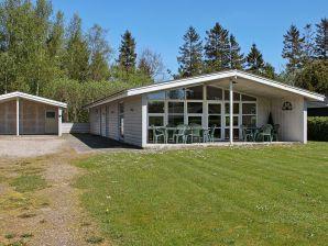 Ferienhaus Toftlund, Haus-Nr: 09474