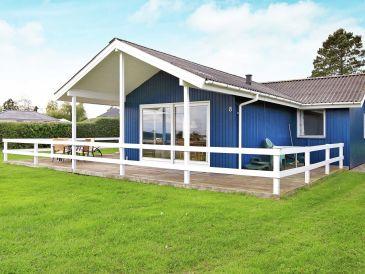 Ferienhaus Faaborg, Haus-Nr: 51229