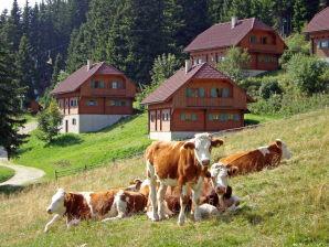 Alpine hut Berghütte Klippitztörl für 12 Personen