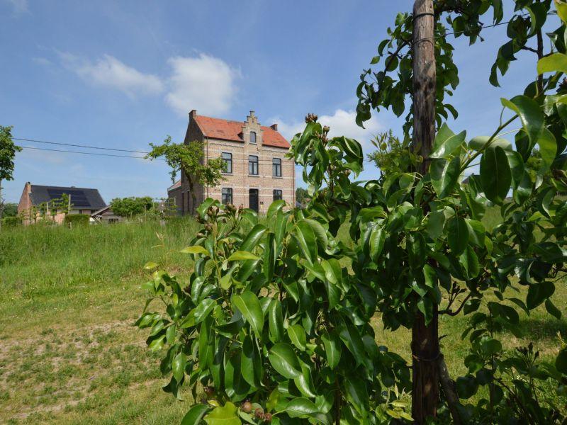 Ferienhaus De Jachtbloesem