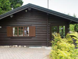 Ferienhaus Schwedenhaus Lönn 22