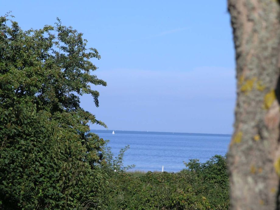 Blick von der Wattwiese aufs Wattenmeer