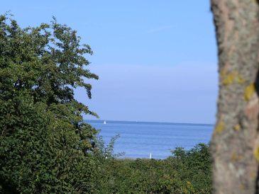 Ferienwohnung Insel-Suite Amrum