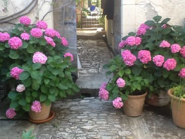 Holiday house La Paternelle
