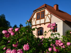 Ferienhaus Villa Taubenberg