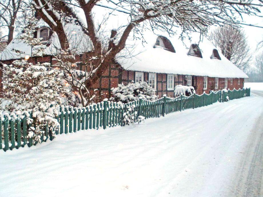 Auch im Winter ist das Blockland ein Traum