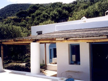 Holiday house Olive tree
