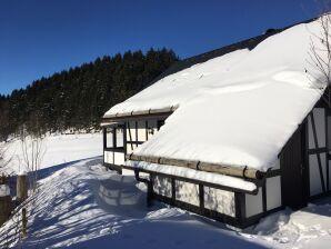 Ferienhaus Romantikhütte Neuastenberg