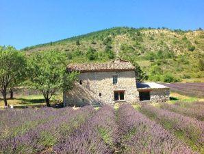 Ferienwohnung Villa Drome