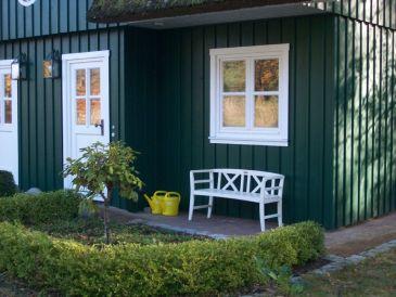 Landhaus Reetdachhaus Wels Born/Darss Ostsee