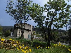 Ferienhaus Pietrasanta 1